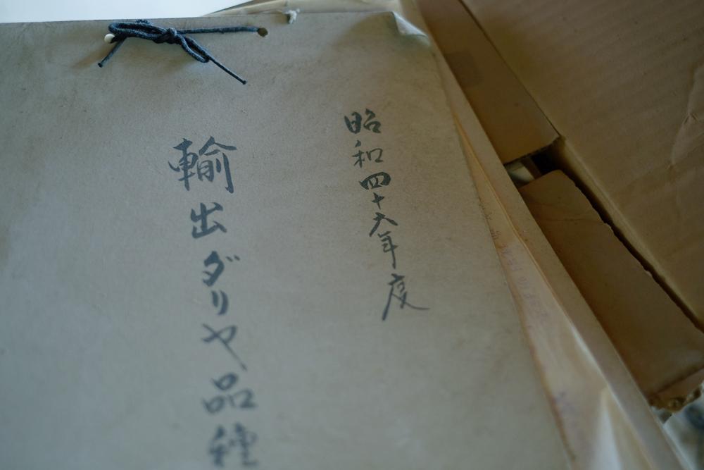 photo-kamisasori111