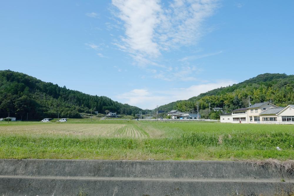 photo-kamisasori175