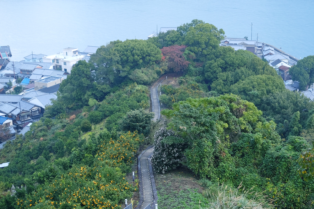 photo-mitarai47