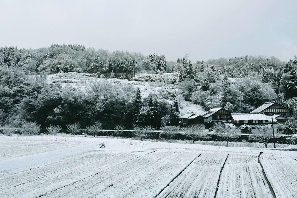 photo-otogawa92