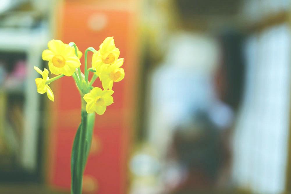 photo-takaoka03