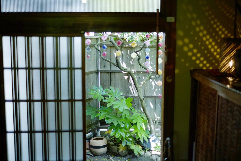 photo-sakasegawa18