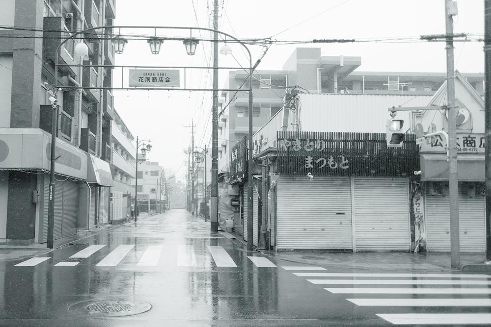 photo-hanakoganei113