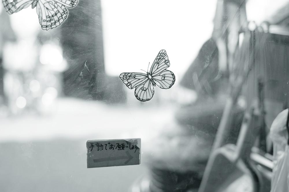 photo-hanakoganei126