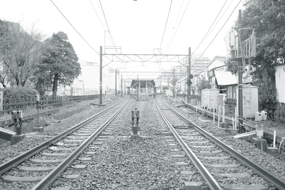 photo-hanakoganei141