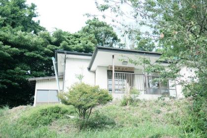 photo-makinohama62-2